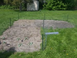 Livingston County Offender Success garden bed